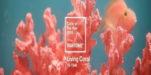 2019 年度流行色来了 —— 珊瑚橙Living Coral